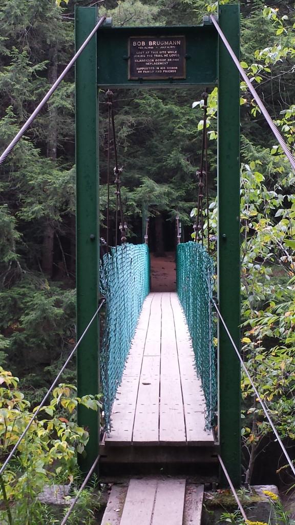 Another fun suspension bridge