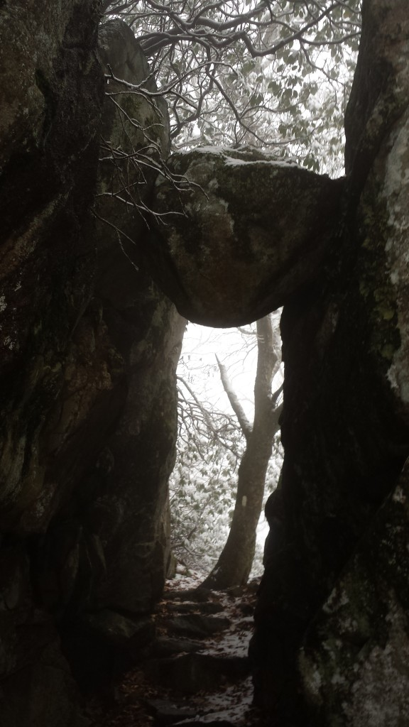 """The trail passes under this boulder called """"The Guillotine."""" See the white blaze on the tree on the other side"""