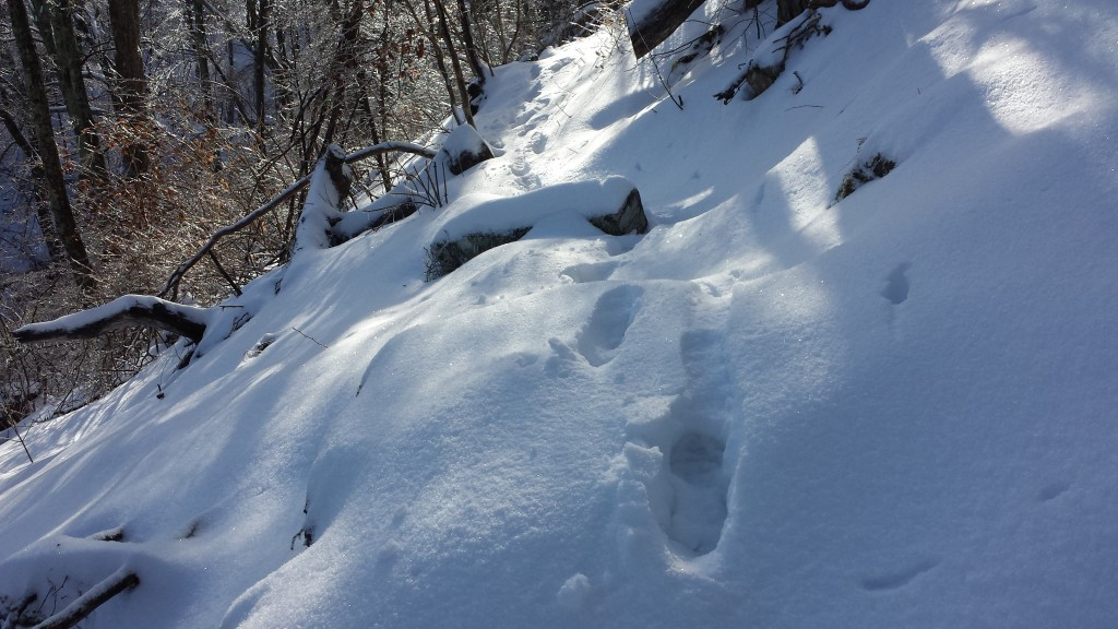 Trudging through deep snow and finding the trail- the two biggest challenges for the first few days