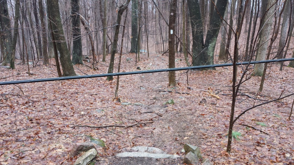 A first for me: downed powerline blocking the trail on day five