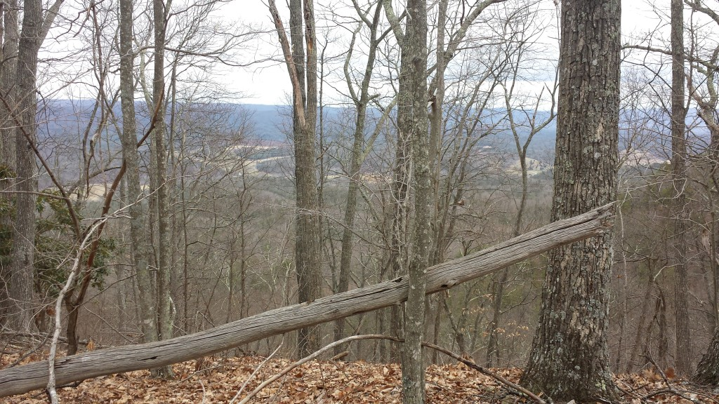 Typical AT view from a Virginia ridge- always another blue ridgeline in the distance