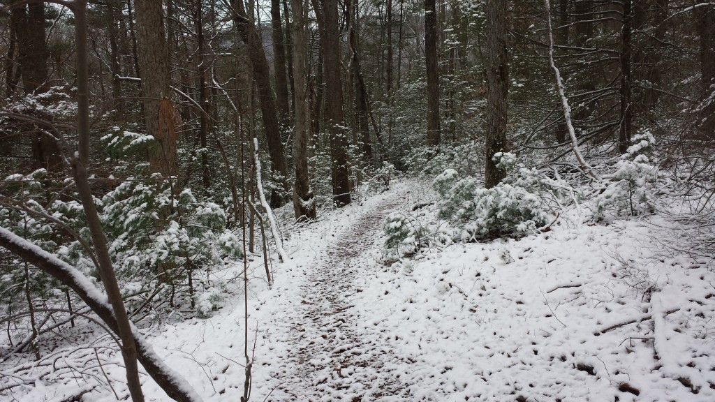 Hiking the next day was easier- most snow had melted