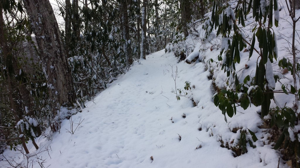Last big snowfall I had to hike through, south of Hampton, TN