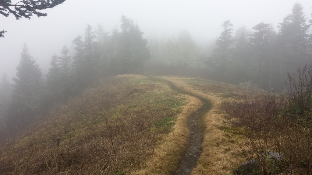 I love misty mornings on the trail